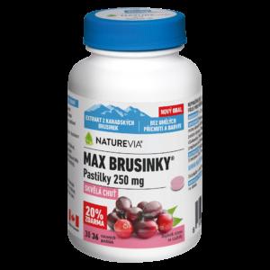 MAX BRUSINKY PASTILKY